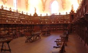 regały biblioteki