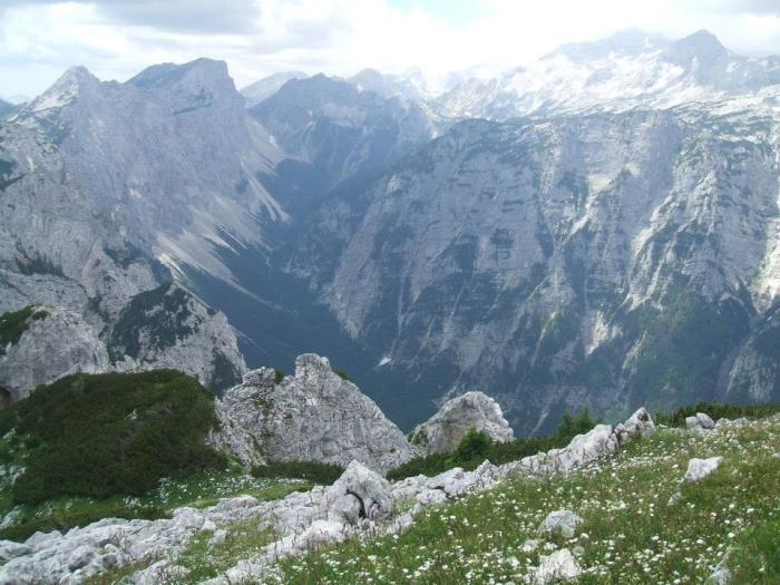 Słowenia 14