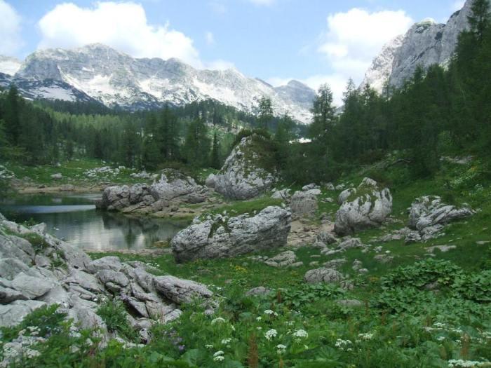 Słowenia 4