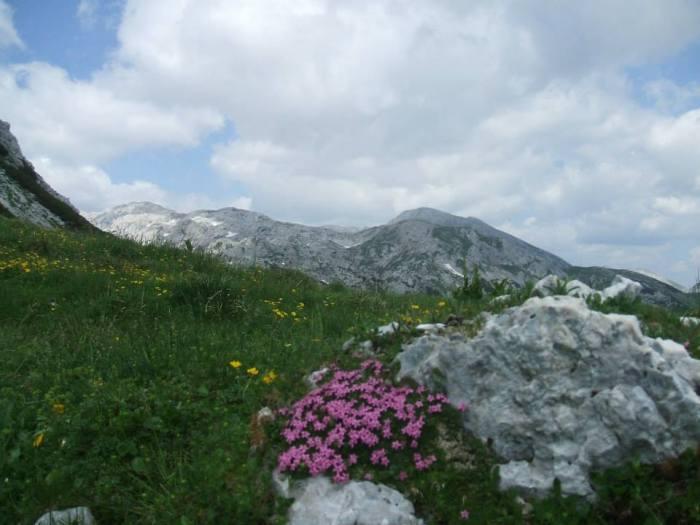Słowenia 9