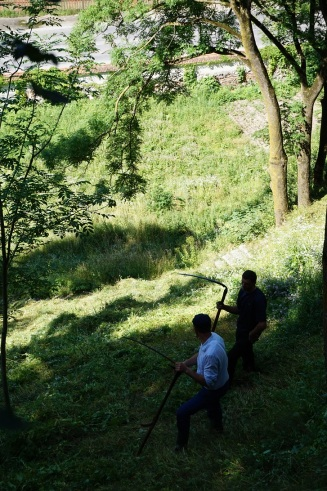 koszenie górzystych trawników